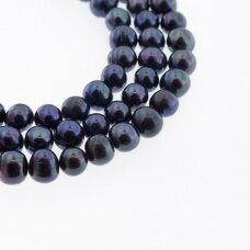 Gėlavandeniai perlai, kultivuoti, D kokybė, pusiau apvali forma, povo mėlyna spalva (dažyti), 35-36 cm/gija, apie 8-9 mm